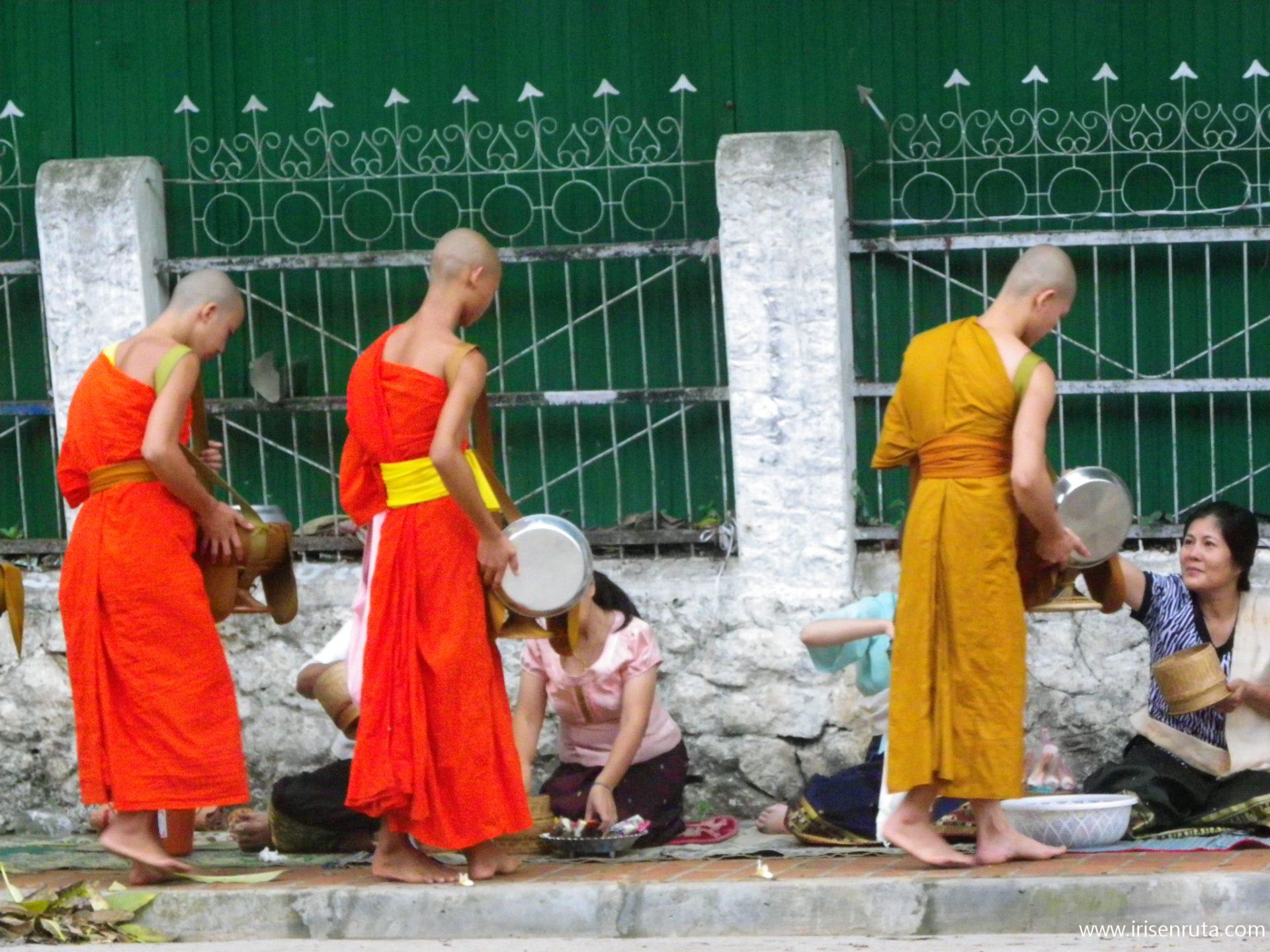 Monjes durante el 'tak bat' en Luang Prabang
