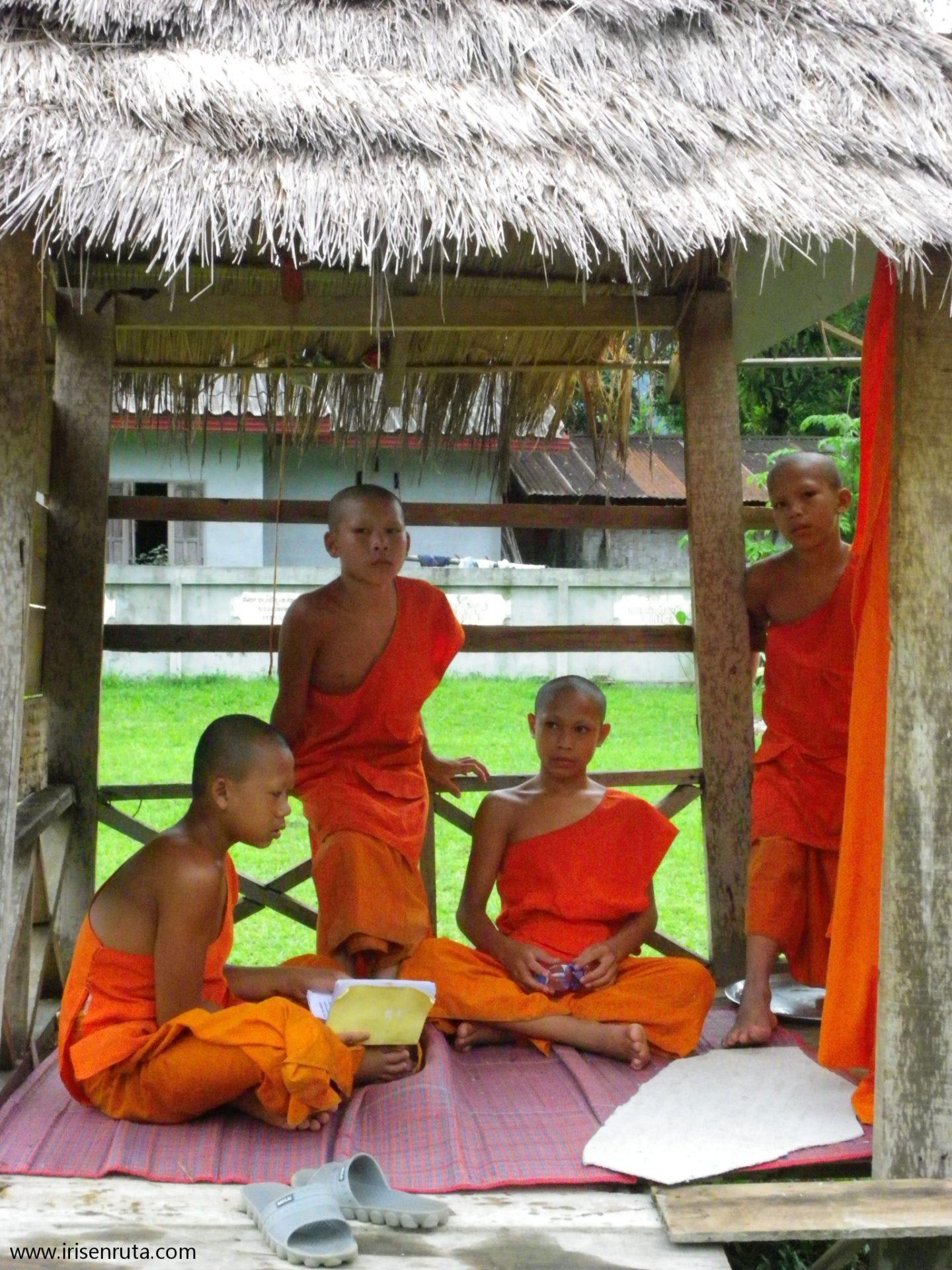 Monjes estudiando. Vang Vieng